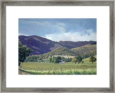 Kunde Framed Print by Paul Youngman