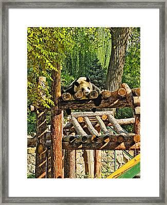 Kung Fu Panda. Deep Sleep. Framed Print by Andy Za