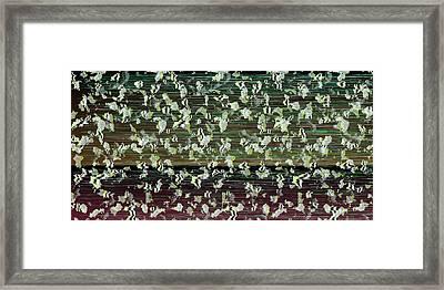 L18-164 Framed Print by Gareth Lewis