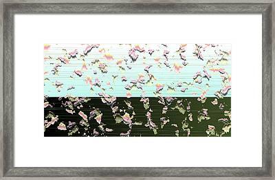 L18-81 Framed Print by Gareth Lewis