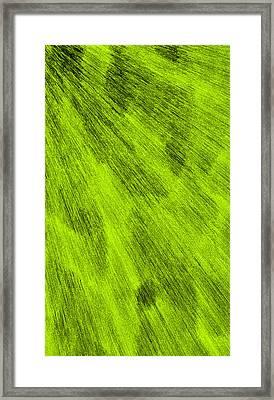 L2-115-187-255-0-3x5-1500x2500 Framed Print by Gareth Lewis