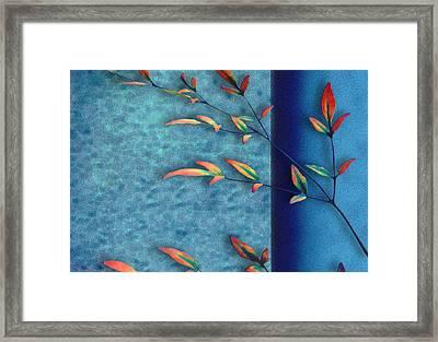 La Branche Framed Print by Paul Wear