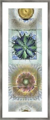 Lab Form Flower  Id 16165-110535-00141 Framed Print by S Lurk