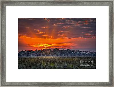 Labor Of Love Framed Print by Marvin Spates