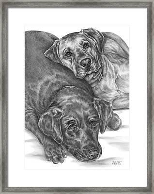 Labrador Dogs Nap Time Framed Print by Kelli Swan