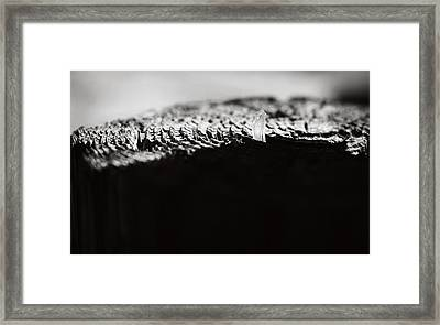 Labyrinth Framed Print by Rebecca Sherman