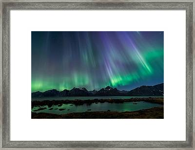 Lady Of The Night Framed Print by Tor-Ivar Naess