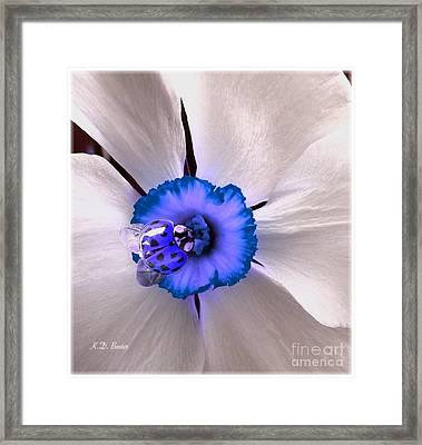 Ladybug I So Dig You Framed Print by Kimberlee Baxter