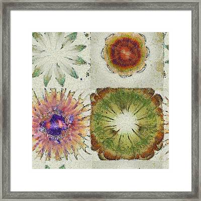 Lagniappe Chimera Flowers  Id 16165-014439-96870 Framed Print by S Lurk