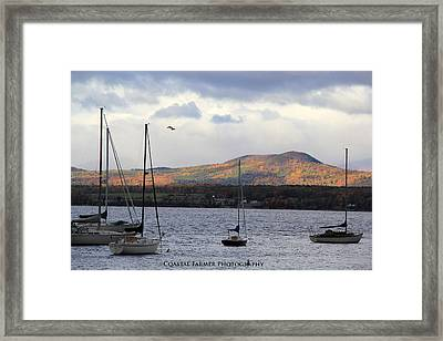 Lake Champlain Framed Print by Becca Brann