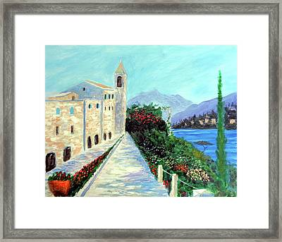 Lake Como Colors  Framed Print by Larry Cirigliano