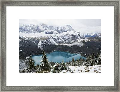 Lake O Hara In Yoho National Park Framed Print by Carl Bruemmer