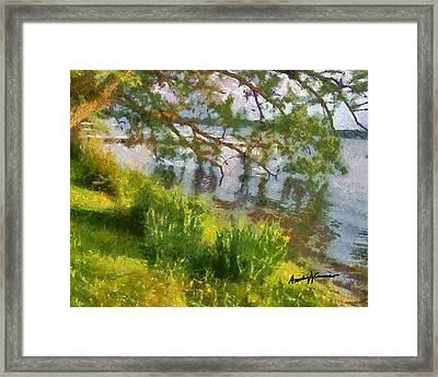 Lakeshore Framed Print by Anthony Caruso