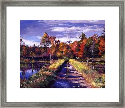 Lakeside Road Framed Print by David Lloyd Glover