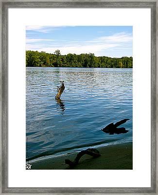 Lakeview   Framed Print by Debra     Vatalaro