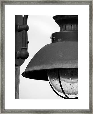 Lamp Post Framed Print by Amanda Barcon