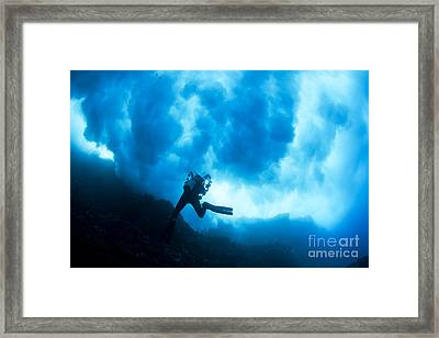 Lanai Diver Framed Print by Dave Fleetham - Printscapes