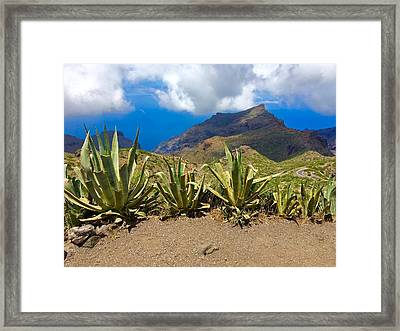 Landscaoe Framed Print by Contemporary Art
