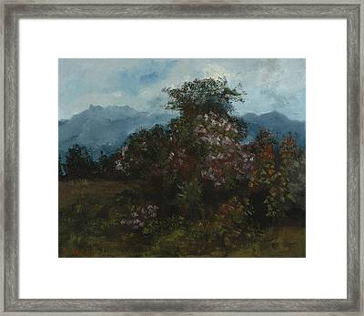 Landscape With Flowery Massiv Framed Print by Gustave Courbet