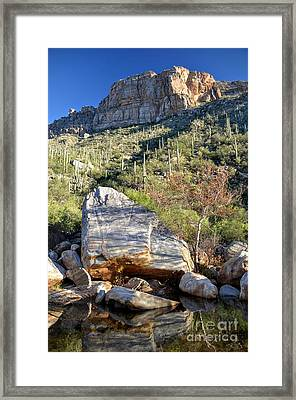 Landslide At Sabino Canyon - Rincon Road Photography By Ben Petersen - Rinconroad.com Framed Print by Rincon Road Photography By Ben Petersen