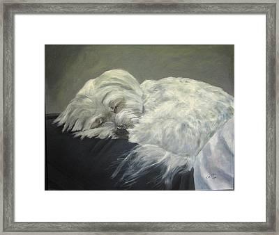 Lap Dog Framed Print by Elizabeth  Ellis