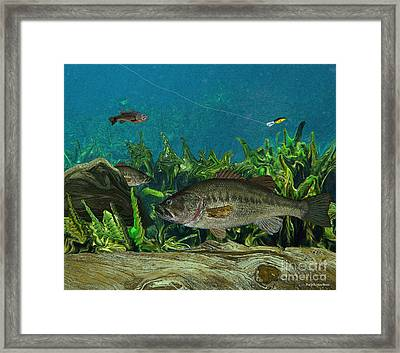 Largemouth Bass Framed Print by Ralph Martens