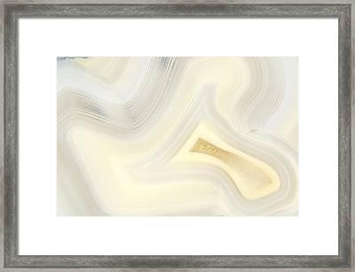 Las Choyas Spirit Framed Print by Bill Morgenstern