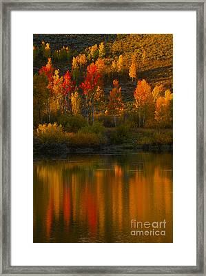 Last Light At Oxbow Bend  Framed Print by Sandra Bronstein