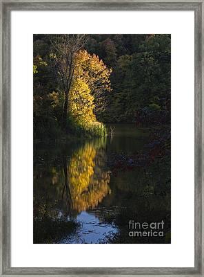 Last Light - D009910 Framed Print by Daniel Dempster