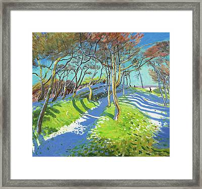 Last Of The Snow, Ladmanlow Framed Print by Andrew Macara