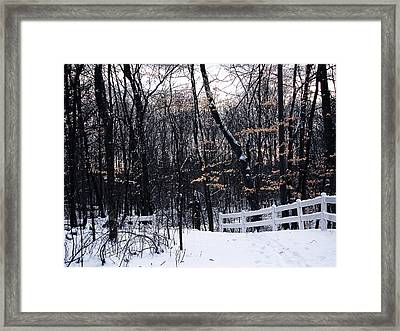 Last Remains Of Autumn Framed Print by Scott Hovind
