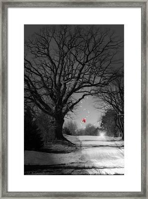 Last Show  Framed Print by Cathy  Beharriell