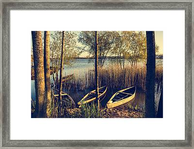 Late Afternoon On The Lake I Framed Print by Marco Oliveira