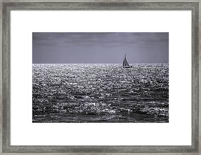 Late Afternoon Sailing Framed Print by Randy Bayne