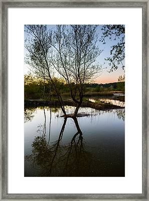 Late Evening Reflections IIi Framed Print by Marco Oliveira