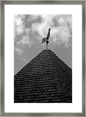 Late Summer In Williamsburg Framed Print by Brian M Lumley