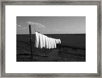 Laundry Line Framed Print by Aidan Moran