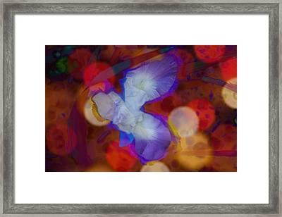 Laura Framed Print by Elizabeth Celio
