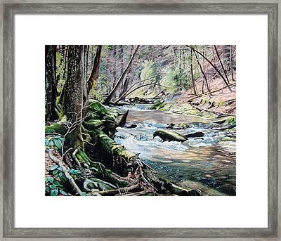 Laurel Creek  Framed Print by Jennifer Oakley-Delaplante