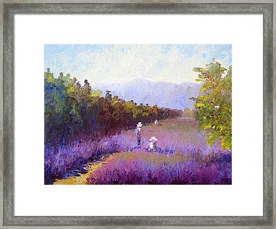 Lavender Fields Framed Print by Terry  Chacon