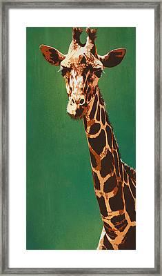 Lavish Lashes And Long Larynx Framed Print by Tai Taeoalii