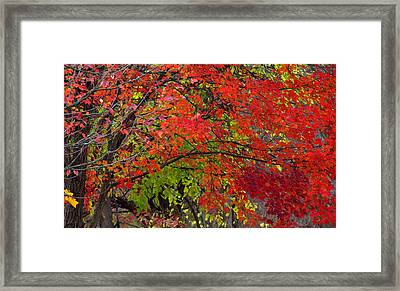 Layers Framed Print by Ed Smith