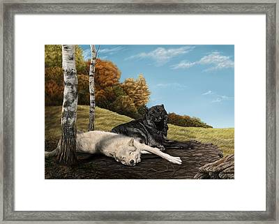 Lazy Day Framed Print by Laura Klassen