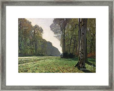 Le Pave De Chailly Framed Print by Claude Monet