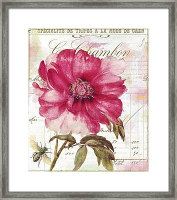 Le Pink  Framed Print by Mindy Sommers