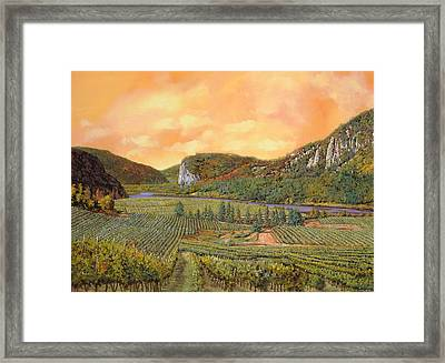 Le Vigne Nel 2010 Framed Print by Guido Borelli