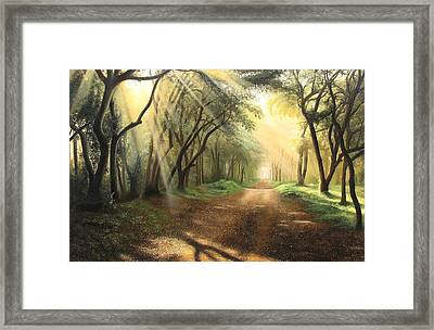 Lead Kindly Light Framed Print by Shiv