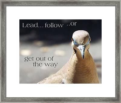 Lead Or Follow Framed Print by Michael Dillon