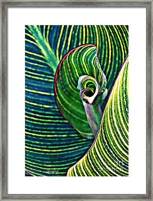 Leaf Abstract 5 Framed Print by Sarah Loft