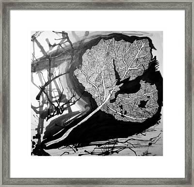 Leaf Framed Print by Jera Sky